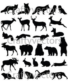 Woodland Animals vector file by CraftyVectors on Etsy