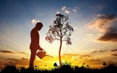 Investment background Investment, financial management, goal, tree planting, earth day, environmental protection, growth, water, sky, background, material, creativity,