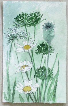 Garden Nature Art Daisies Watercolor Original by BetweenTheWeeds,