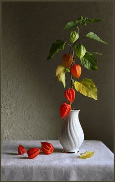 Still life photo, Клуб Foto. Painting Still Life, Still Life Art, Double Exposition, Art Beat, Still Life Photos, Chinese Lanterns, Arte Floral, Still Life Photography, Ikebana