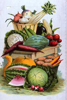 ✿Basket fruits & Vegetables✿ mix Fruit and vegetables
