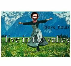What does the valley mean. I heard harry day it but I don't understand it? One Direction Memes, I Love One Direction, Harry Edward Styles, Harry Styles, 6 Feet Under, 1d And 5sos, 5 Seconds Of Summer, Zayn, Cool Bands