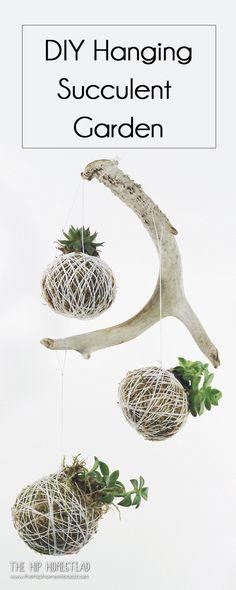 How to make a hanging succulent garden - The Hip Homestead #diy #succulent #hanginggarden