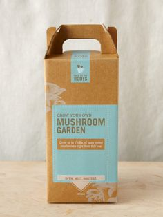 Back to the Roots - Grow-Your-Own Mushroom Garden