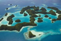 Top 15 Ocean Conservation Wins of 2015 - http://www.77evenbusiness.com/top-15-ocean-conservation-wins-of-2015/