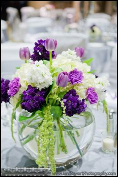 Purple and white short centerpieces @Mary Powers Powers Powers Powers Mauck