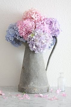 zinc pitcher from France with hydrangeas