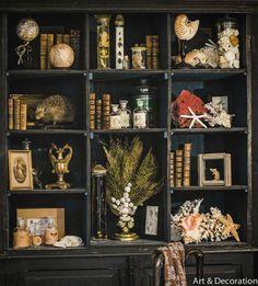 Cabinet of curiosities decor _ kabinett der kuriosi. Cabinet of curio