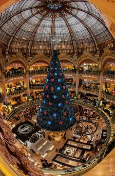 Christmas Tree, Galeries Lafayette, Paris, France