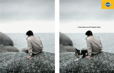 """A dog makes your life happier. Adopt."" Awesome Pedigree ad featured in The World's Best Outdoor Ads, 2012-13 