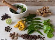 Ayurvedic Herbs Treatment is very effective for your endless disease. Please Call on +919215567044.