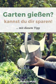 Keine Zeit, kein Problem! 5 Tipps für einen pflegeleichten Gemüsegarten - Du möchtest Obst und Gemüse im Garten anbauen mit möglichst wenig Zeit und wenig Arbeit? Das Mulchen der Beete oder Hochbeete mit Stroh bekämpft Unkraut und erspart dir das Garten gießen. Außerdem verrate ich dir, die besten Tipps für eine große Ernte mit wenig Aufwand, z.B. das Anbauen von mehrjährigen Pflanzen und ein guter Anbauplan. Viel Spaß! :) #Gemüsegarten #Selbstversorgung #Wurzelwerk Urban Gardening, Watering Can, Canning, Planting Fruit Trees, Woodland Garden, Organic Vegetables, Mulches, Home Canning, Apartment Gardening