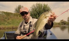 Like Swimming Ducks #flyfishing #blackbass #popper #italy #lake #movi-media