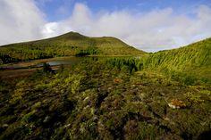 SIARAM :: Zonas Húmidas :: Lagoa Rasa - Serra Devassa, Sao Miguel Island, Azores, Portugal