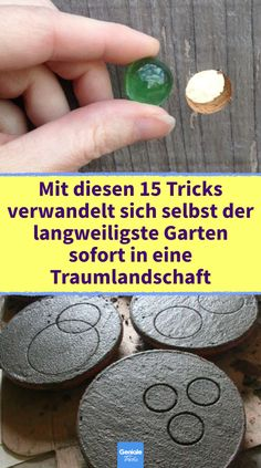 Garden Care, Diy Hacks, Garden Landscaping, Greenery, Landscape, Tricks, Flowers, Plants, Outdoor