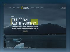 National Geographic Article, the idea was to create a simple, yet visually pleasing page for National Geographic. Possibly a home page showcasing a specific article. Check out the attachment and le...