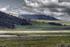 Lamar Valley by Jack R Perry