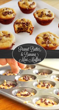 Peanut Butter & Banana Mini Muffin Recipe | This tasty bite sized treats are easy to make and gluten-free to boot! A blender is key to whipping up the creamy batter along with a touch of honey, vanilla extract, and mini chocolate chips. Can be enjoyed morning, noon or night!