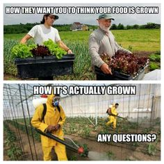 He who controls seeds controls life. Iran Syria Russia Ukraine fight to be #Gmo Free of,monsanto
