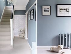 Hallway - farrow & ball oval room blue dining room blue hallway, oval r Hallway Colour Schemes, Hallway Paint Colors, Blue Color Schemes, Room Colors, Colours For Hallways, Paint Colours, Oval Room Blue, Dining Room Blue, Blue Rooms