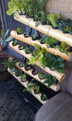 How to Build a Hydroponic Garden #hydroponicgardeninghowtobuild