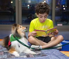 You can see the magic happening:' reading to therapy dog helps shy boy.