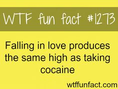 love facts MORE OF WTF FACTS are coming HERE awesome and fun factsONLY