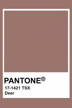 Discover recipes, home ideas, style inspiration and other ideas to try. Pantone Swatches, Color Swatches, Pantone Colour Palettes, Pantone Color, Neutral Colour Palette, Bedroom Colour Palette, Paleta Pantone, Brown Pantone, Wall Colors