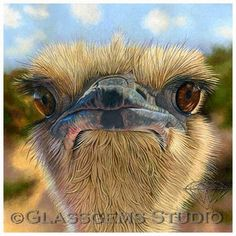 Gemma Gylling, CPSA - Glassgems Studio: My Ostrich won second place!!!