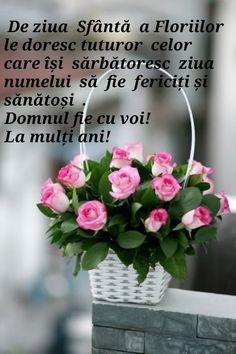 Lily, Motivation, Birthday, Birthdays, Orchids, Lilies, Dirt Bike Birthday, Inspiration, Birth Day
