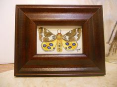 Moth painting Original moth painting Butterfly by sunshinethicket