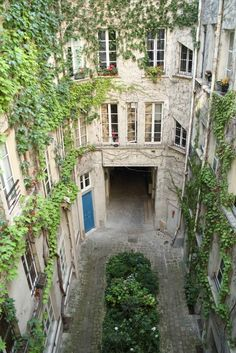 Love this French apartment courtyard, lots of vines and foliage Le Marais, Paris. France.