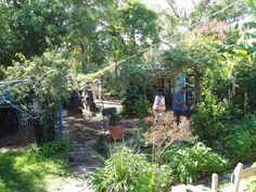 permaculture | Permaculture garden using recycled everything | Upcycle ♺