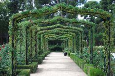 Retiro Park, Rose garden, Madrid, Spain