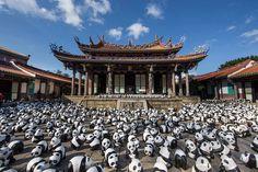 1,600 pandas in hong kong - each papier mache panda represents one of the few pandas left alive in the wild.