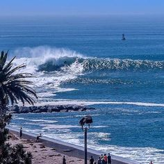 Surfing holidays is a surfing vlog with instructional surf videos, fails and big waves Wave Pool, Surfing Quotes, Surf City, Big Waves, Ocean Beach, Water, Kitesurfing, Outdoor, Big Wednesday