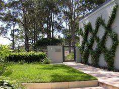 clareville-3 Sandy Soil, Landscape Designs, Sidewalk, Plants, Side Walkway, Walkway, Plant, Landscape Design, Walkways