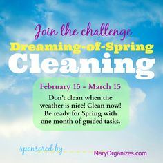 Get Ready!! The Dreaming-of-Spring Cleaning Challenge!