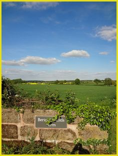 Rape field in the distance - Bericote Farm near Cubbington. #warwickshire #farms