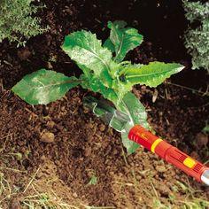 multi-change® Weed Extractor 4cm