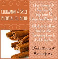 Cinnamon and Spice E