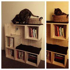 Lo que necesito !  Un librero así de peque y con espacio para el gato jaja   DIY s by Colin Roberts at Coroflot.com