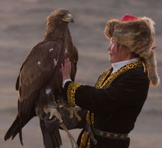 """darylfranz:  カザフ族:13歳の少女が6000年間で初の女性鷹匠に - ガハろぐNewsヽ(・ω・)/ズコー モンゴル最西部、バヤン・ウルギー県のカザフ族に、古代から継承される美しい「鷹狩り」。鷹匠とイヌワシの間に長期的な深い信頼関係を築きあげるために、 伝統的に13歳から訓練が始められるが、その対象は """"男の子"""" に限られてきた 伝統はゆるやかに変化していく。13歳の少女 アショル・パン(Ashol Pan) の訓練が、この6,000年ではじめて女性の「鷹匠」となるべく開始 永い歴史のなかで、恋い焦がれ、この瞬間を待ちわびた数多の祖先、女性たちにとっては、まさに """"6千年越しの夢"""" が叶った瞬間。"""