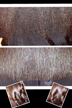 Hair Rejuvenation, healthy hair, natural hair pressed