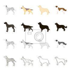 Dalmatiner hund, deutscher schäferhund ... Personal Insurance, Maya Civilization, Schaefer, Dalmatian Dogs, Saint Bernards, Canvas Frame, Pictures, Maya