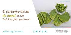 El consumo anual de nopal es de 6.6 kg. por persona. SAGARPA SAGARPAMX #MéxicoAgroPotencia