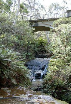 ♥ Leura Cascades, Blue Mountains ~ New South Wales