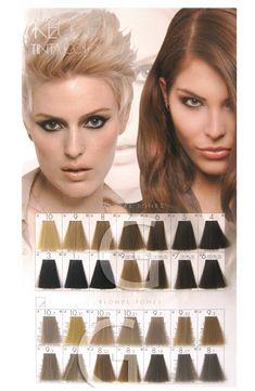 keune tinta color brown shades - Keune Color Swatch Book