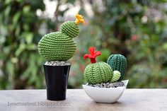 Airali design. Where is the Wonderland? Crochet, knit and amigurumi.: Il mio giardino zen - crochet cactus #7