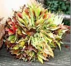 Eenvoudig maar heel mooi van gekleurde herfstbladeren en sterk ijzerdraad deze krans .